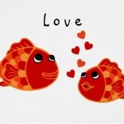 PR st valentin
